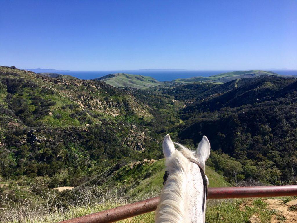 Circle Bar B Guest Ranch & Stables