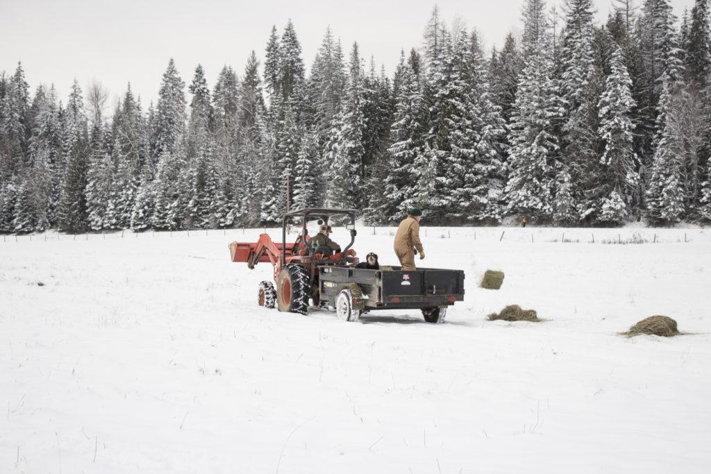 Western Pleasure Guest Ranch Winter