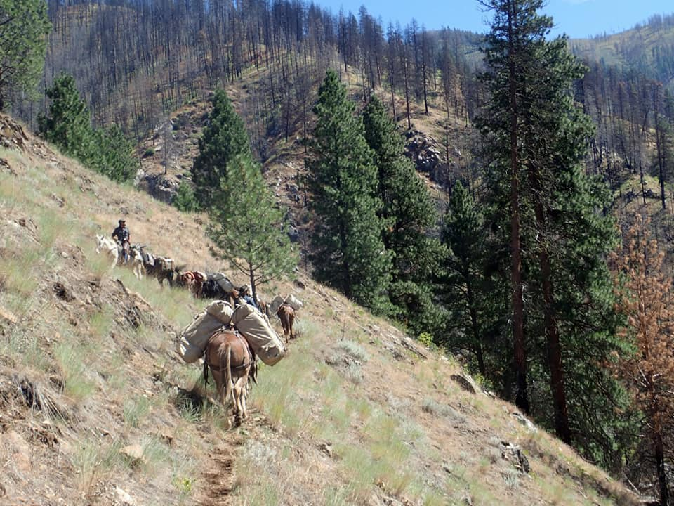 Hells Canyon Outfitters