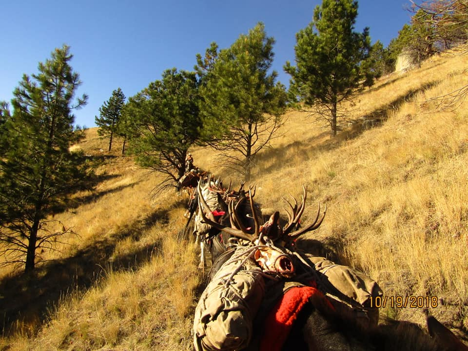 Hells Canyon Outfitters - Idaho