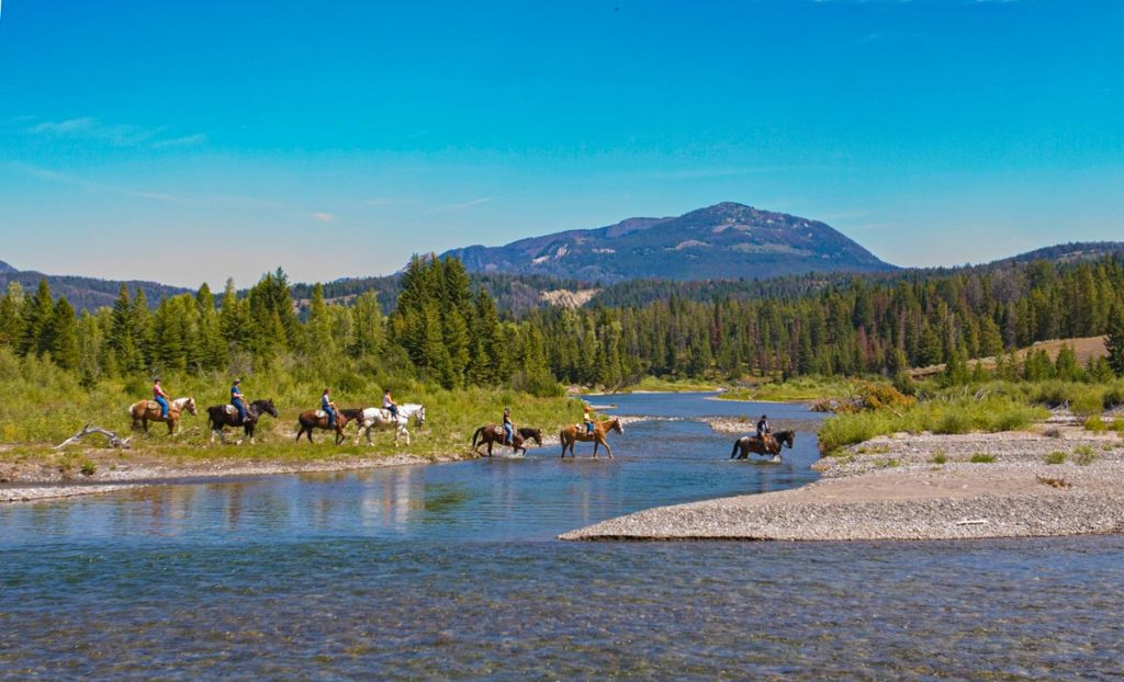 Yellowstone Outfitters