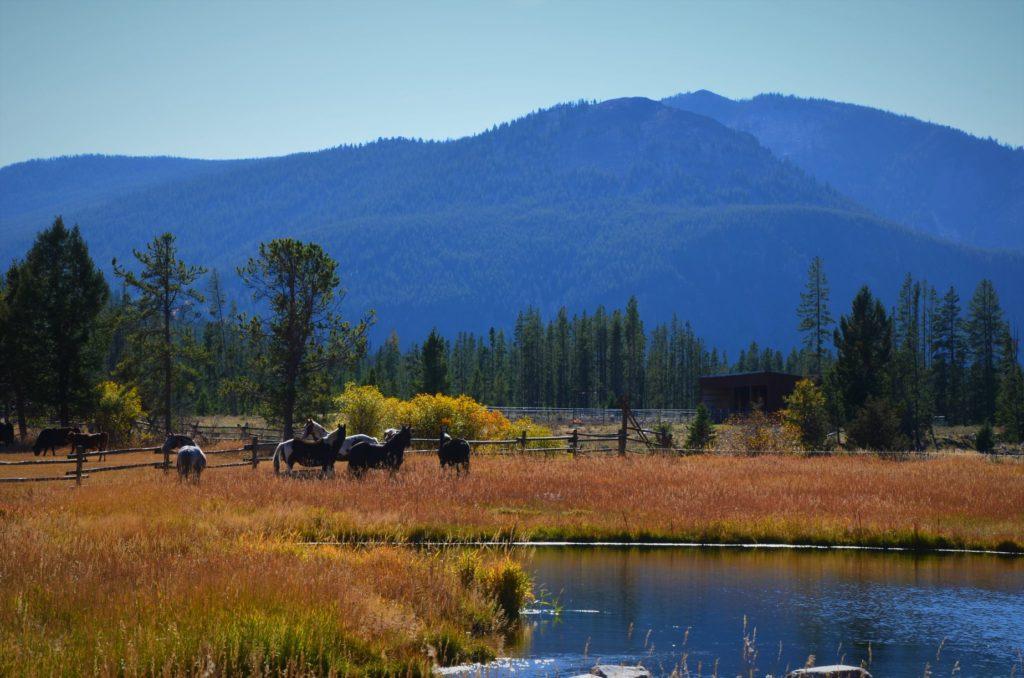 Flying Cloud Ranch Montana