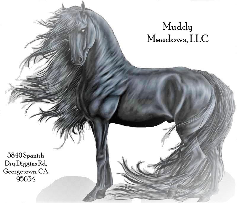 Muddy Meadows, LLC California