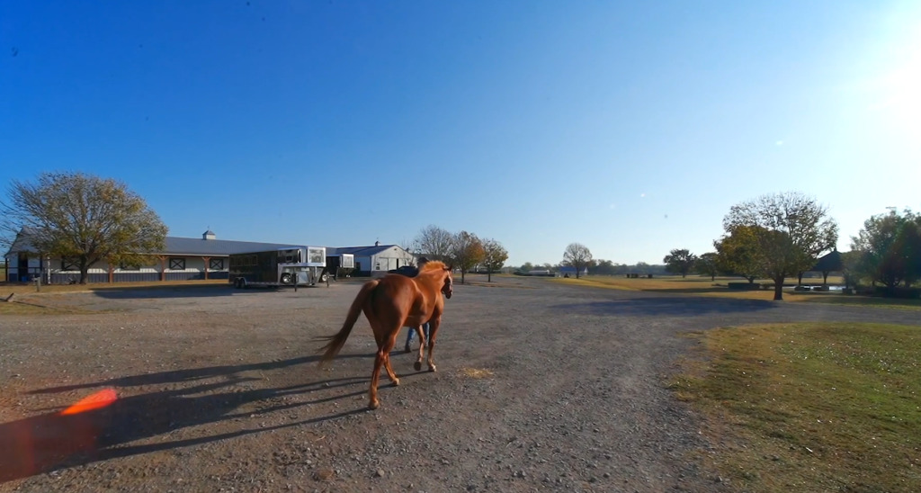 Sheridan Farm Equestrian Center