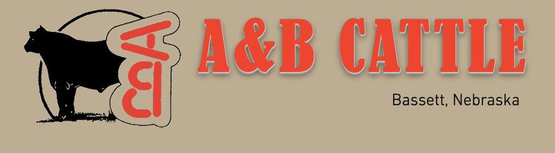A&B Cattle Nebraska