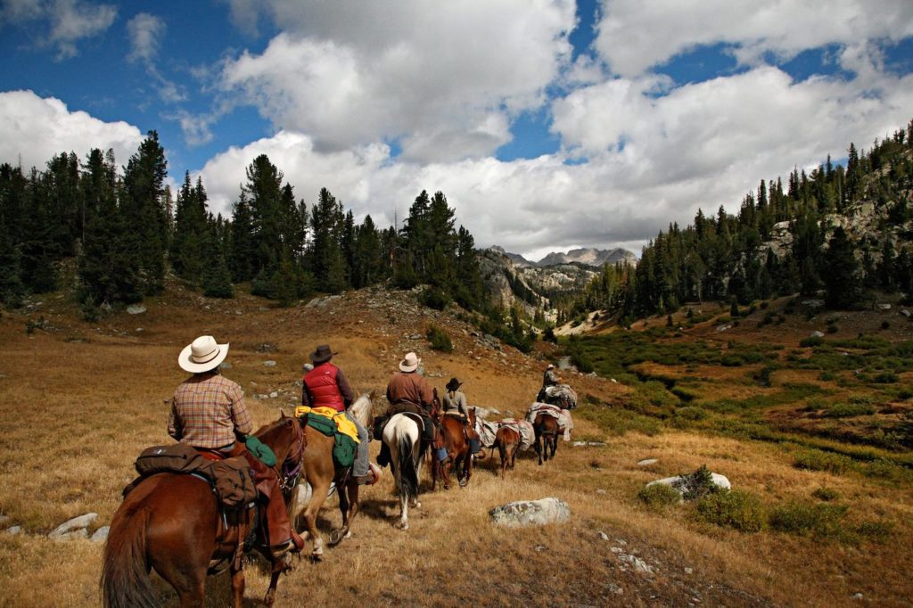 Bald Mountain Outfitters Wyoming