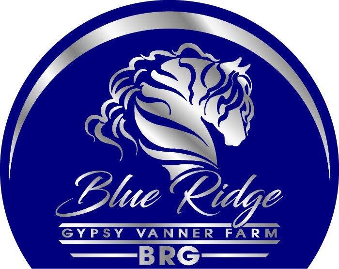 Blue Ridge Gypsy Vanner Farm