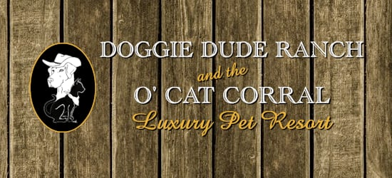 Doggie Dude Ranch and the O'Cat Corral - Colorado