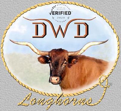 DWD Longhorns