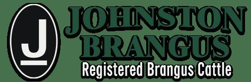 Johnston Brangus