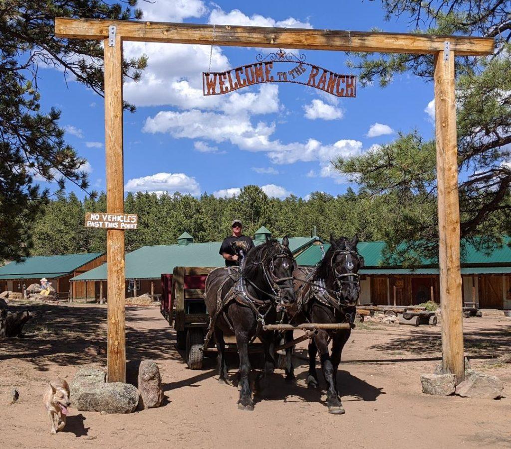 M Lazy C Guest Ranch