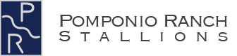 Pomponio Ranch Stallions