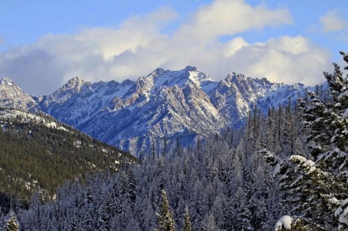 Royal Antler Ranch Views