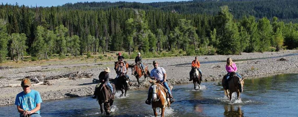Swift Creek Outfitters & Teton Horseback Adventures WY