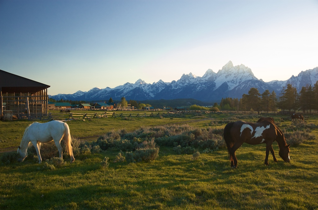 triangle-x-ranch-wyoming